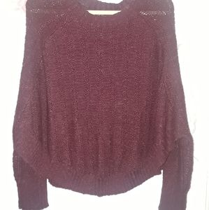 Forever 21 sweater (1x)
